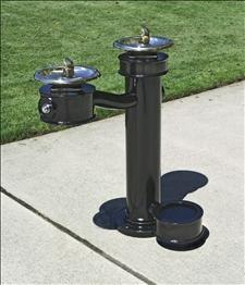 2010-08 Accessible Drinking Fountain with Pet Bowl